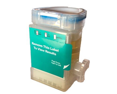 Urine Sample Collection